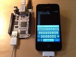 Blinking the heartbeat LED of a BeagleBone from the iPhone